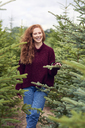 Portrait of laughing redheaded young woman in the woods - ABIF00709
