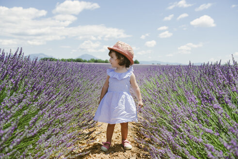 France, Provence, Valensole plateau, toddler girl standing in purple lavender fields in the summer - GEMF02129