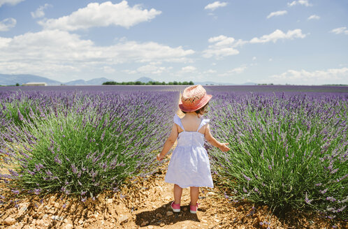 France, Provence, Valensole plateau, rear view of toddler girl standing in purple lavender fields in the summer - GEMF02138
