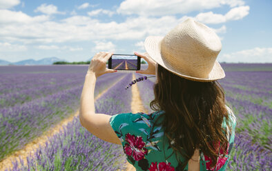 France, Provence, Valensole plateau, woman taking smartphone picture in lavender fields in the summer - GEMF02150