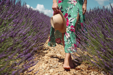 France, Provence, Valensole plateau, Barefoot woman walking among lavender fields in the summer - GEMF02159