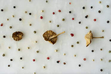 Arrangement of three mushrooms and many peppercorns on white ground - AFVF00819