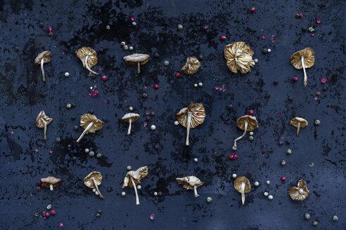 Arrangement of dried mushrooms and peppercorns - AFVF00822