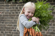 A young girl holding a large bunch of carrots. - MINF00277