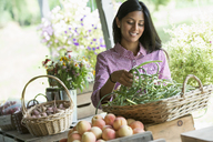 A farm stand with fresh organic vegetables and fruit.  A woman holding bunches of carrots. - MINF00591