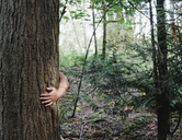 Man hugging tree in lush, green forest - MINF00731