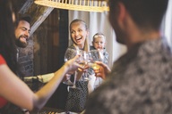 Family and friends enjoying dinner, eating, drinking, having fun - AWF00113