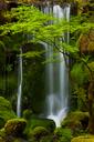 Waterfall, Columbia River Gorge, Oregon, USA - MINF00952