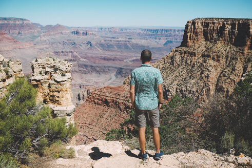 USA, Arizona, Grand Canyon National Park, Grand Canyon, back view of man looking at view - GEMF02191