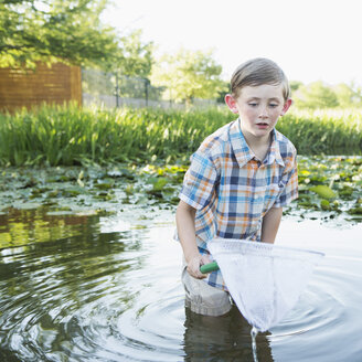 A young boy standing thigh deep in water, with a fishing net. - MINF01523