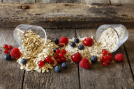 Various oat flakes and berries - EVGF03370