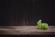 Lettuce leaf on wood - NAF00112