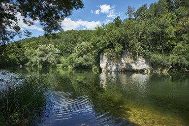 Germany, Baden-Wurttemberg, Sigmaringen district, Danube river near Thiergarten - ELF01895