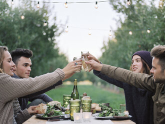 Apple orchard. Group of people toasting with a glass of cider, food and drink on a table. - MINF02274