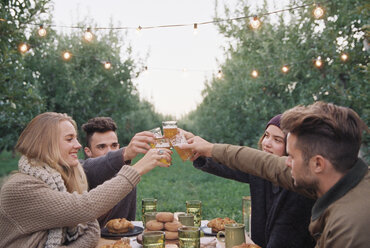 Apple orchard. Group of people toasting with a glass of cider, food and drink on a table. - MINF02292