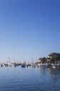 Italy, Liguria, Riviera di Levante, Golfo del Tigullio, Rapallo, harbour - GWF05593