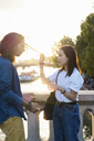 France, Paris, young couple standing on a bridge at river Seine at sunset - AFVF01130