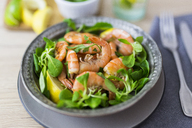 Shrimps with lamb's lettuce on plate - GIOF03991