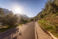 Spain, Andalucia, MA-4102 Mondron - Alfarnatejo road - SMAF01060