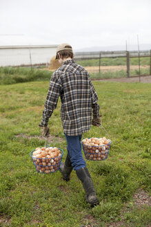Boy carrying two baskets of eggs - ISF17838
