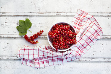 Bowl of red currants - LVF07347