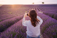 France, Valensole, back view of woman taking photo of lavender field at sunset - GEMF02217