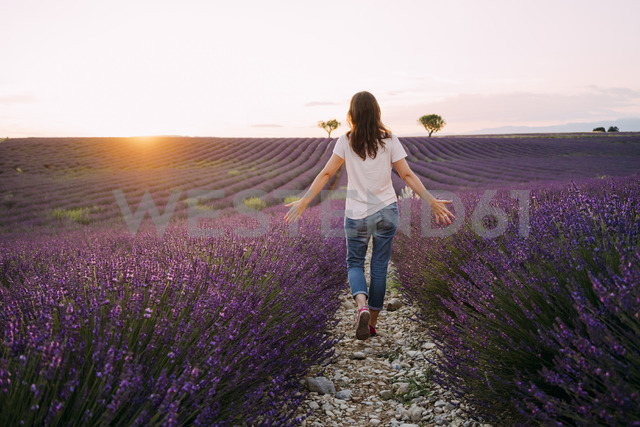 France, Valensole, back view of woman walking between blossoms of lavender field at sunset - GEMF02232 - Gemma Ferrando/Westend61