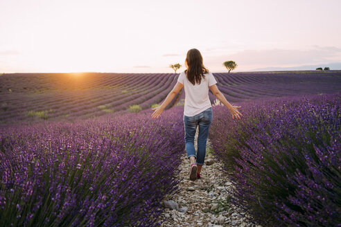 France, Valensole, back view of woman walking between blossoms of lavender field at sunset - GEMF02232