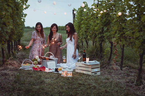 Friends having a picnic in a vinyard, burning sparklers - MAUF01645
