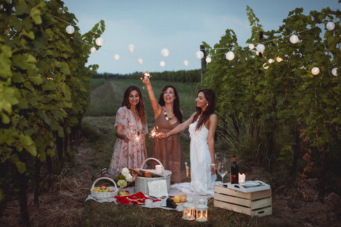 Friends having a picnic in a vinyard, burning sparklers - MAUF01648