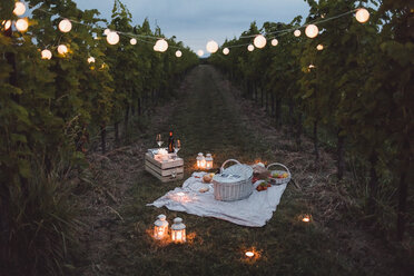 Food and light arranged in vineyard for a picnic at night - MAUF01660