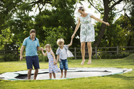 Man, woman, boy and girl holding hands, jumping on a trampoline set in the lawn in a garden. - MINF04433