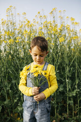 Portrait of little boy with picked flowers in nature - JRFF01776