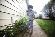 Boy, child photographing a flowerbed with a camera. - MINF05116