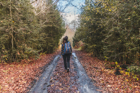Spain, Ordesa y Monte Perdido National Park, back view of woman with backpack in autumn - AFVF01293