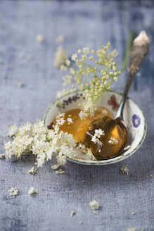 Bowl of elder jelly and elderflowers - MYF02048