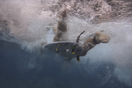 Maledives, Indian Ocean, surfer on surfboard, underwater shot - KNTF01189
