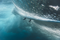 Maledives, Indian Ocean, wave and surfboard, underwater shot - KNTF01192