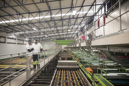 Workers talking in apple factory, sorting machine - ZEF15942