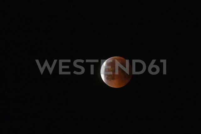 Germany, blood moon - JTF01031