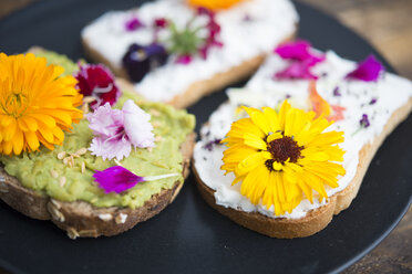 Toast with avocado hummus and sprad cheese with edible flowers - SKCF00527