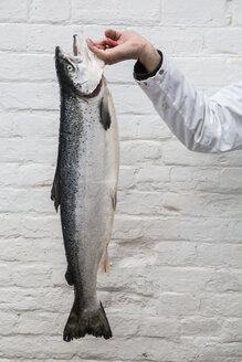 Close up of fishmonger holding aloft fresh salmon. - MINF08432