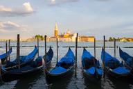Italy, Venice, Gondolas at San Giorgio Maggiore in the evening - GIOF04179