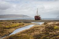 Iceland, Vestfiroir, ship wrack - KEBF00857