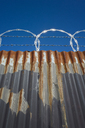 Low angle view of worn corrugated metal fence, razor wire above. - MINF08682