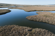 The open spaces of marshland and water channels. Flat calm water. - MINF08917