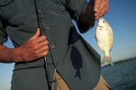 A man displays his small catch while fishing in Florida. - AURF01133
