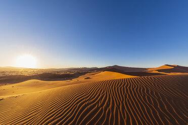Africa, Namibia, Namib desert, Naukluft National Park, sand dunes against the morning sun - FOF10091