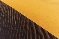 Namibia, Namib desert, Naukluft National Park, sand dune, full frame - FOF10100