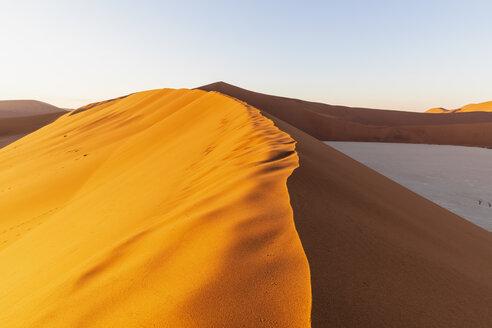 Africa, Namibia, Namib desert, Naukluft National Park, Deadvlei and sand dunes in the morning light - FOF10103